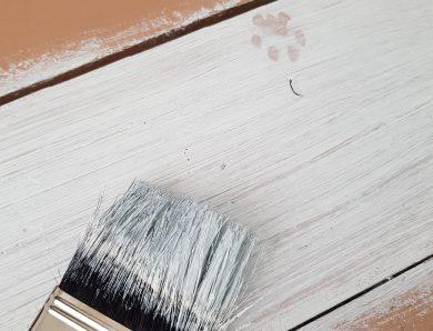 Holzzaun streichen:  Anleitung in 5 Schritten