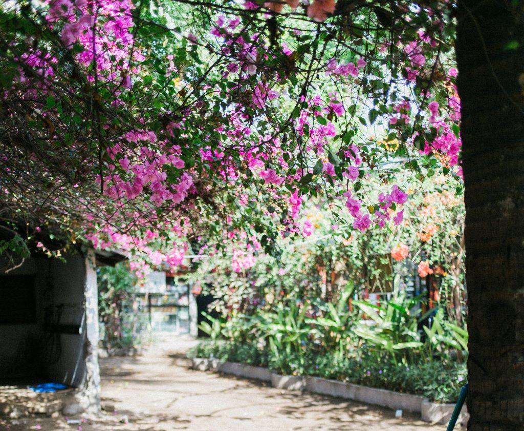Palisaden im Garten als Beetkante