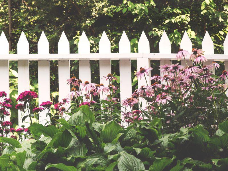 Zaun zum Nachbarn – Diese Bestimmungen müssen Sie beachten